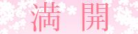 sakura_status_mankai